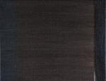 "elegie ix 2009 acrylic on linen (81⁄2"" x 11"")"