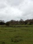 Farm Spring 2012