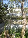 Heygate Trees 3