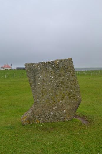 Stenness Stone 7