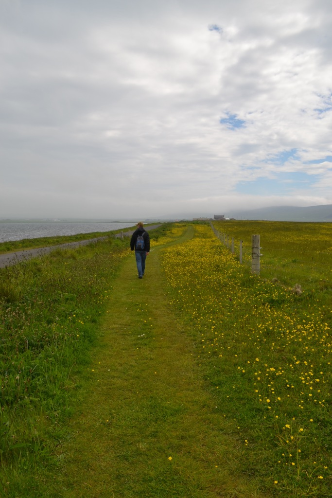 Stenness to Brodgar 16